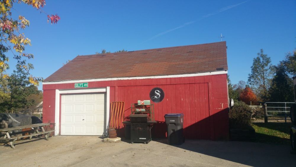 Wisconsin shed roof before replacement